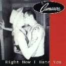 The Camaros - Right now I hate you CD